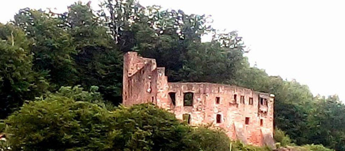 Burgruine-Freienstein